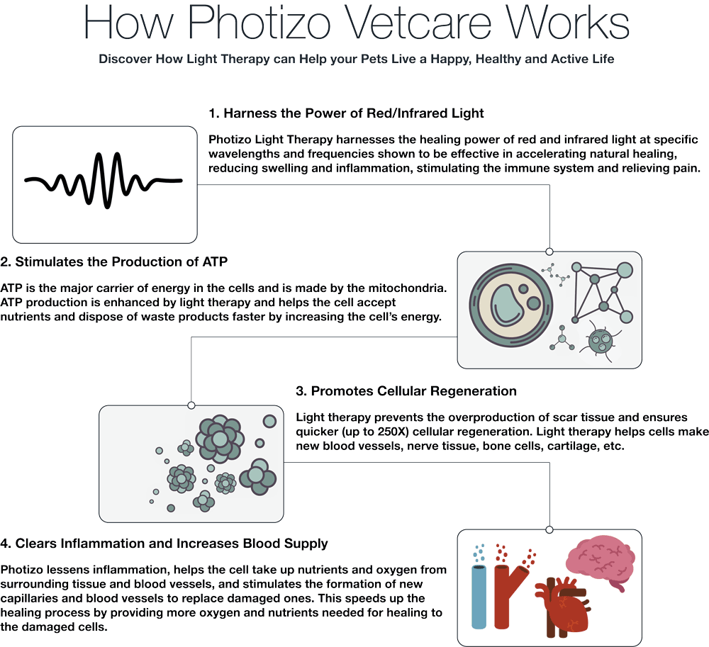 How Photizo Vetcare Works