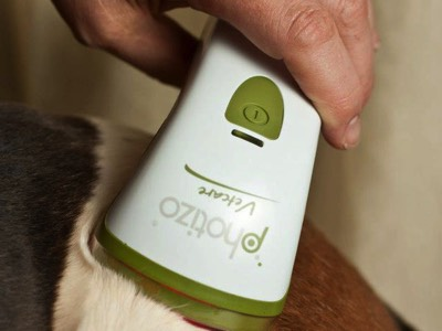 Red Light Therapy for Animals