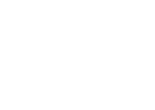 Photizo Vetcare Logo White